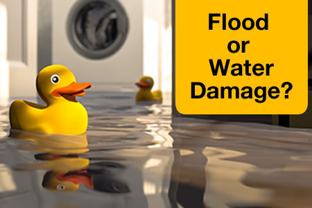 Flood Damage vs Water Damage: Know the Difference?